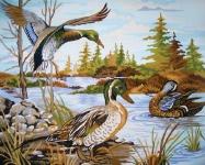 Grafitec Printed Tapestry/Needlepoint – Mallards (colverts)