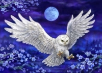 Grafitec Printed Tapestry/Needlepoint – Moonlight Owl
