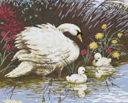 Grafitec Printed Tapestry/Needlepoint – Mother Swan & Signets