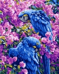 Grafitec Printed Tapestry/Needlepoint Canvas – Blue Parrots
