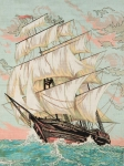 Grafitec Printed Tapestry/Needlepoint Canvas – Clipper at Speed