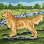Grafitec Printed Tapestry/Needlepoint Canvas – Golden Retriever