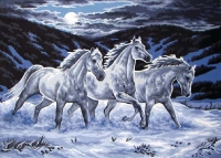 Grafitec Printed Tapestry/Needlepoint Canvas – Midnight Stallions