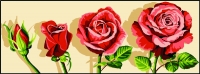 Margot de Paris Tapestry/Needlepoint – Blossoming Rose