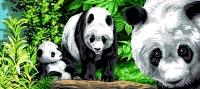 Margot de Paris Tapestry/Needlepoint – Pandas in the Bamboo