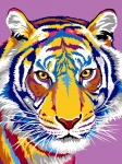 Margot de Paris Tapestry/Needlepoint – The Tiger Drawings