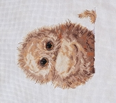 Owlet- Animal Magic 14 count Counted Cross Stitch Kit