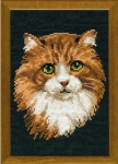 Riolis Counted Cross Stitch Kit - The Red Cat