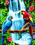 Royal Paris Tapestry/Needlepoint - Macaws (Les Aras)