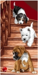Royal Paris Tapestry/Needlepoint - Playful Puppies