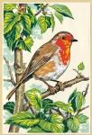 SEG de Paris Tapestry/Needlepoint – Robin (Rouge Gorge)