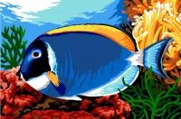 SEG de Paris Tapestry/Needlepoint Canvas – Blue Surgeon Fish