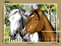 SEG de Paris Tapestry/Needlepoint Canvas – Horses