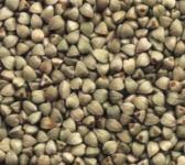 Buckwheat 'grains'