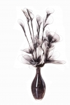 Vases with Net Flowers