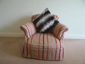 Chinchilla Black Cushion